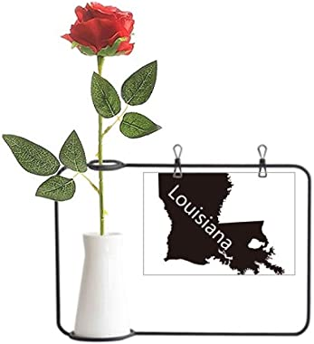 Beauty Gift Louisiana America USA Map Outline Artificial Rose Flower Hanging Vases Decoration Bottle