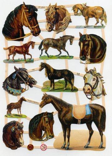 Glanzbild EF 7302 Pferde Tiere