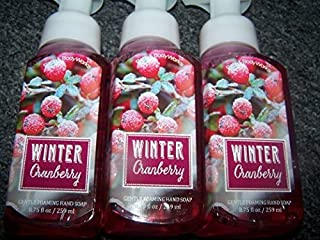 Lot of 3 Bath & Body Works Winter Cranberry Gentle Foaming Hand Soap 8 Fl Oz Each (Winter Cranberry)