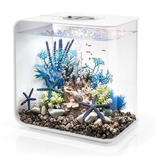 biOrb Flow 30 Aquarium with MCR Lighting - 8 Gallon, White