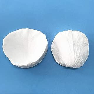 Best cold porcelain flower making Reviews