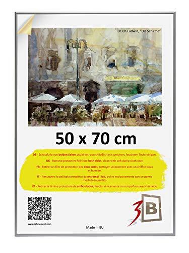 3-B Alu Poster Brushed - Großer Bilderrahmen - mit Polyesterglas und Schutzverpackung - Silber matt - 50x70 cm (Format B2)
