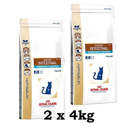 Royal Canin, Gastro Intestinal, cibo per gatti con poche calorie, 2 confezioni da 4 kg = 8 kg (etichetta in lingua italiana non garantita)
