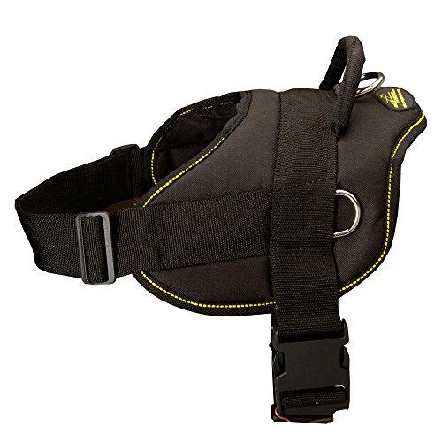 Harnais pour chien en nylon réglable canne pour tirer, léger et Formation – Taille XS