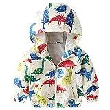 Chaqueta con capucha para bebé, niño o niña, chaqueta con capucha, abrigo de invierno, primavera, dibujos animados, resistente al viento, con bolsillos 03 3-4 Años