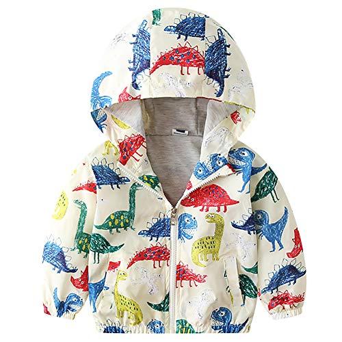 Chaqueta con capucha para bebé, niño o niña, chaqueta con capucha, abrigo de invierno, primavera,...