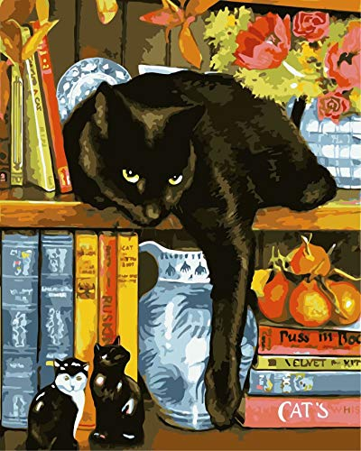 Oil Paint Painting by Numbers DIY Picture Drawing Coloring on Canvas Painting by Hand Wall Paint by Number Black Cat 16 X 20 inch (Framed)