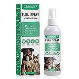 CBROSEY Flea Spray, Flea Treatment Cat,Flea Treatment For Dogs,Dog Fleas Protection Spray,Tick and Flea Protective for Dogs Cats