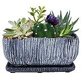 Cement Succulents Pot Rectangle
