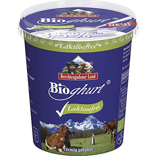 Berchtesgadener Land Bio Bioghurt Natur laktosefrei 3,5% absolut Fett (6 x 400 gr)