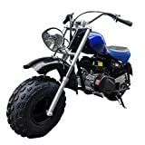 X-PRO 2020 Version Supersized 200 Mini Bike Gas Powered Mini Trail Bike Scooter Mini Motorcyle for...