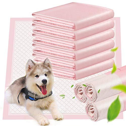 ACE2ACE Tappetini Igienici per Cani, 10 pezzi Tappetini Assorbenti per Animali Domestici, Usato per Addestramento per Cane di Taglia Piccola o Media, 60 x 60 cm