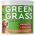 PAWFECTCHEW Dog Pee Grass Saver - Grass Treatment for Dog Urine - Dog Urine Neutralizer for Grass Burn Spots - Dog Pee Lawn Repair Treats with Probiotics - Made in USA - 120 Chews