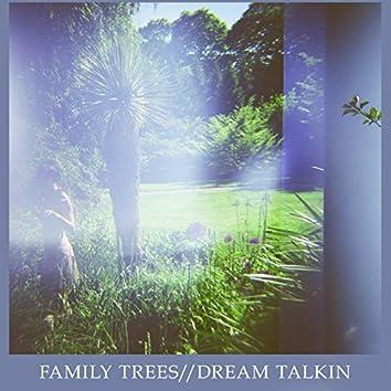Dream Talkin