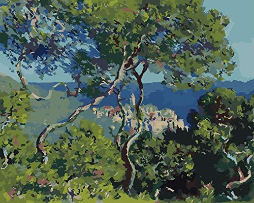 Berma de Monet en algún lugar del norte de Italia Pintura por Números para Adultos y niños Pintar Diy al óleo Bricolaje Pinceles Principiantes Hogar Lienzo Decoraciones Colores Acrílica Conjunto Casa