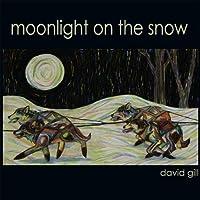 Moonlight on the Snow