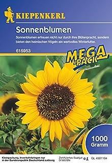 Sonnenblumen Peredovick 1 Kg.