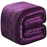 Soft King Size Summer Blanket All Season 350GSM Thicken Warm Fuzzy Microplush Lightweight Thermal Fleece Blankets for Couch Bed Sofa SOFTCARE Purple 90' 108'