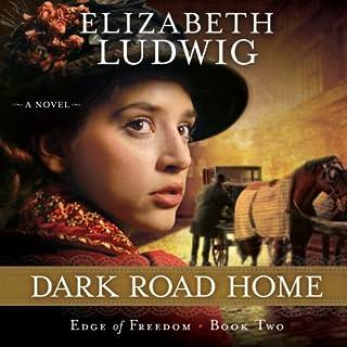 Dark Road Home audiobook cover art