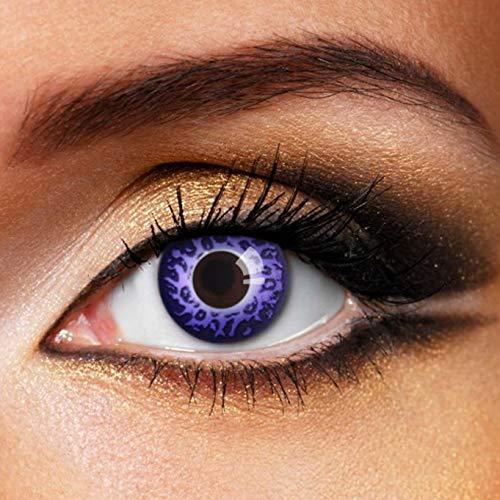 Partylens Farblinsen - Purple Leopard - weiche Kontaktlinsen - Jahreslinsen mit Kontaktlinsenbehälter Jahreslinsen, Purple, BC 8.6 mm/DIA 14.5 mm / 0 Dioptrien