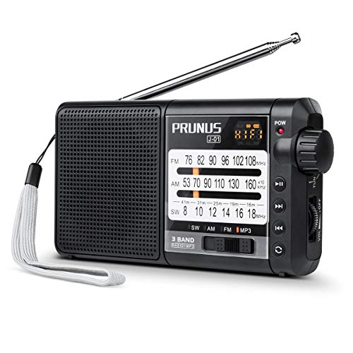 PRUNUS J-01 Klein Radio UKW/FM/AM(MW)/SW/Micro SD/MP3/WMA/DSP Transistor Tragbares Radio