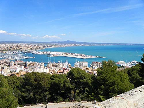 symzl Puzzles 1000 Stück, lustiges Holzpuzzle, Kinderspielzeug lustige Spiele Tolles pädagogisches Geschenk - Palma De Mallorca