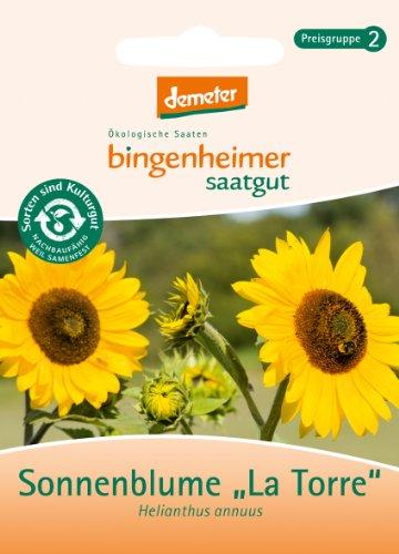 """Bingenheimer Saatgut - Sonnenblume \""""La Torre\"""" - Blumen Saatgut / Samen"""