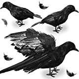 Halloween Crows Ravens Decorations with Wings Spread & Closed Shape Realistic Black Crow Feathered Fake Crow Birds Decoys Halloween Decorations Outdoor Indoor Party(2Pcs Large 10.5