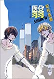 翳 SHADOW―硝子の街にて〈18〉 (講談社X文庫―ホワイトハート)
