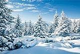 Cassisy 2,2x1,5m Vinilo Telon de Fondo Antecedentes de la Escena de la Nieve del Invierno Contexto De La Escena De La Nieve Fondo nevado Fondos para Fotografia Party Photo Studio Props Photo Booth
