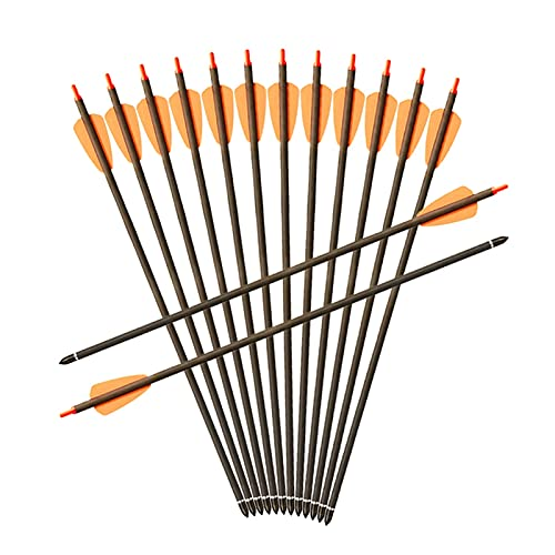 YJDSZD Hunting Archery SP350 Pure Carbon Crossbow Arrows 15inch for Crossbow Archery Shooting (Color : 6pcs)