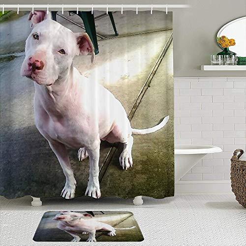 ZYLASTORE Juego de 2 Cortinas de Ducha con Alfombra Antideslizante,American Pitbull Terrier Blanco Blanco Pit-Bull,Cortina de baño Impermeable con 12 Ganchos
