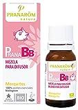Pranabb Mezcla Difusor Antimosquitos Citronella 10 ml (A partir de 3 meses)