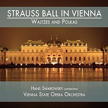 Strauss Ball in Vienna: Waltzes and Polkas