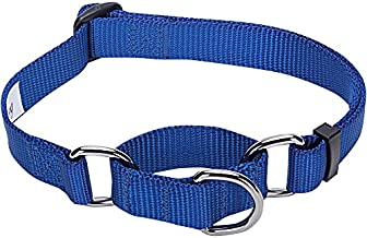 Blueberry Pet Essentials 21 Colors Safety Training Martingale Dog Collar, Royal Blue, Large, Heavy Duty Nylon Adjustable Collars for Dogs
