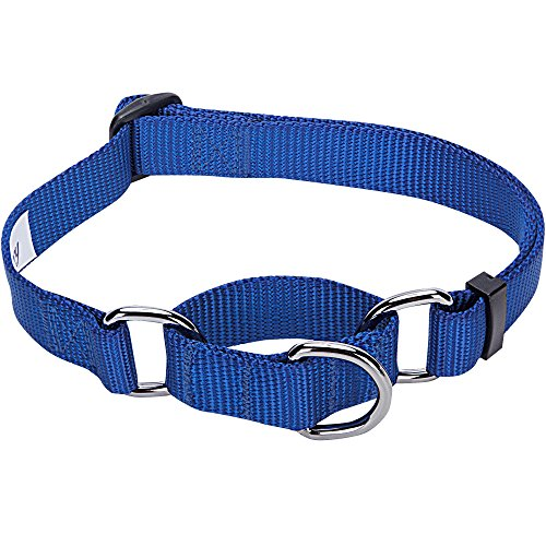 Blueberry Pet Essentials Safety Training Martingale Dog Collar, Royal Blue, Large, Heavy Duty Nylon Adjustable Collars for Boy and Girl Dogs