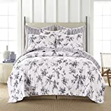 Levtex home - Avellino Grey Quilt Set - Full/Queen Quilt (88x92in.) + Two Standard Pillow Sham (20x26in.) - Floral Bird Toile - Charcoal Grey and White - Reversible - Cotton Fabric