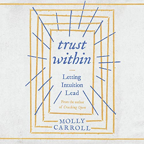 Trust Within audiobook cover art