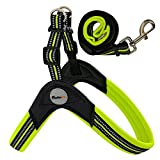 GEILHOPET No Pull Dog Harness and Leash, Waterproof, Chew/Escape Proof Male/Female Dogs, No-Slip, Durable and Adjustable, Breathable, Military/Service/Pet Dog, (Small, Green)