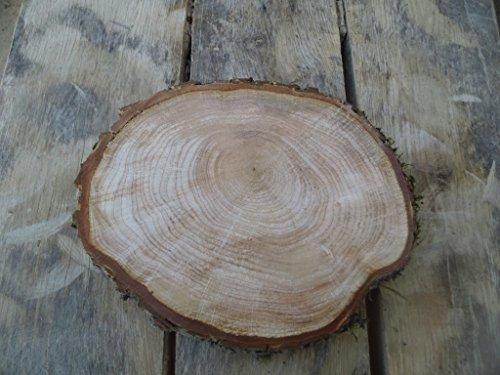 KJR Holzmanufaktur Baumscheibe, Holzscheibe,ca. 30x3 cm, basteln, Holz,Erle