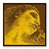 Immagine 1 pirastro evah pirazzi gold 415421