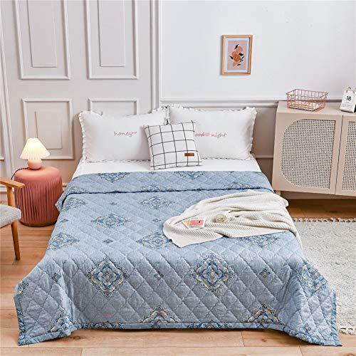 Fansu Tagesdecke Bettüberwurf Steppdecke Mikrofaser Doppelbett Einselbetten Gesteppt Bettwäsche Sofaüberwurf Wohndecke Bettdecke Stepp Gesteppter Quilt (Edles Muster,180x200cm)