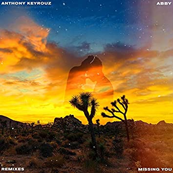 Missing You (feat. Abby) [Robert Cristian Remix]