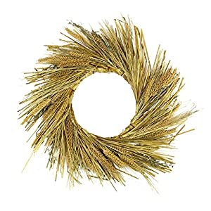 """Northlight Unlit Autumn Harvest Wheat Grass and Grapevine Thanksgiving Fall Wreath, 22"""""""