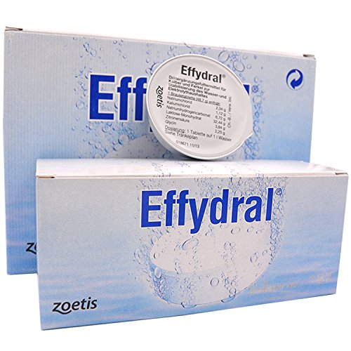 Zoetis Effydral Brausetabletten 48 Stk