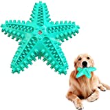 AVNICUD Giocattoli da masticare per cani, squeak giocattoli da masticare in gomma non tossici, spazzolini da denti per cani di piccola e media taglia