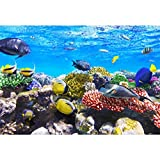 Leowefowa 2,2x1,5m Vinilo Submarino Telon de Fondo Panorama de Especies Marinas Arrecife de Coral Pez Tropical Fondos para Fotografia Party Infantil Photo Studio Props Photo Booth