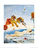 1art1 Salvador Dali - Traum, Verursacht Durch Den Flug