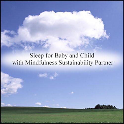 Mindfulness Sustainability Partner