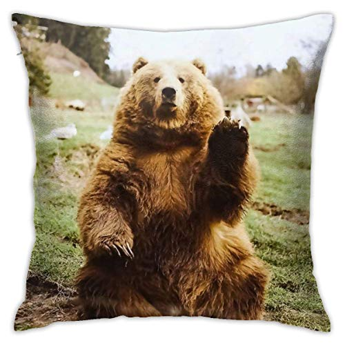 wteqofy Throw Pillow Covers Modern Decorative Throw Pillow Case Sit and Greet The Bear Pillow Covers Cushion Case for Room Bedroom Room Sofa Chair Car,18 X 18 Inch